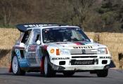 <h5>Peugeot T16</h5><p>Peugeot T16</p>